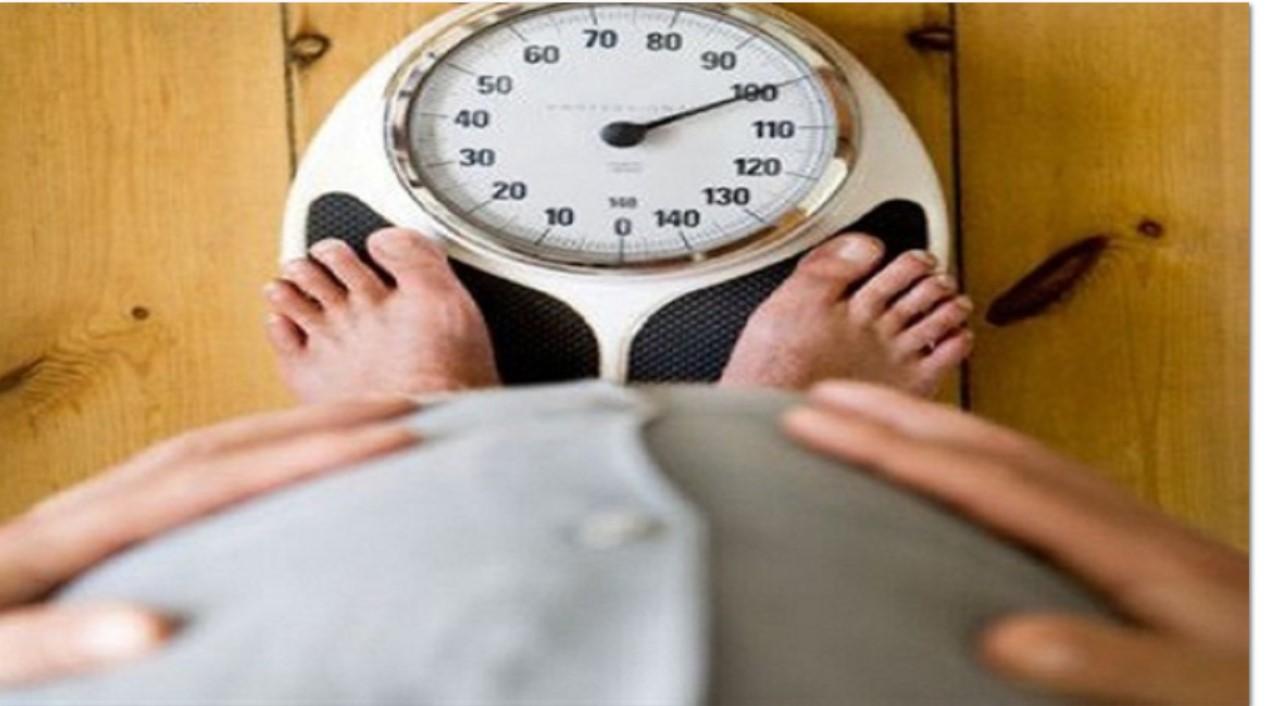 obat herbal untuk obesitas surabaya